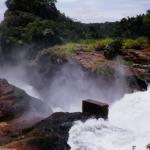 2 Days Murchison Falls National Park : rocks along shores