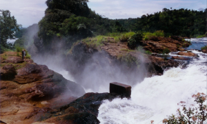 2 Days Murchison Falls National Park : rocks along shores