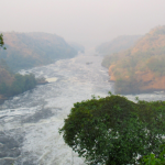 Murchison Falls National Park shore view