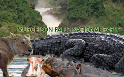 Days Murchison Falls National Park