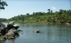 1 Day Jinja shores-features