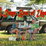 18 Days wild life safaris