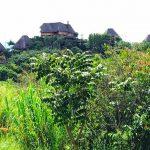 kibale-National-Park-chilling-centres