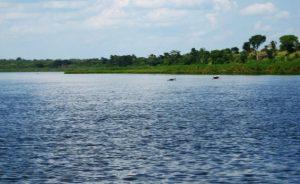 Lake kyoga water body shores