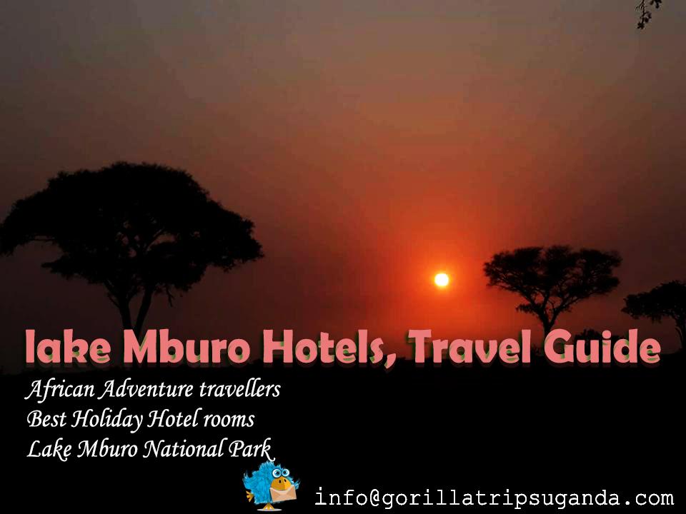Lake Mburo National Park Accommodation Hotels