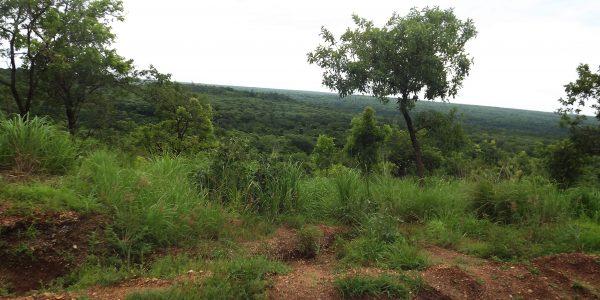 3_Days_River_Nile_Tour_Uganda_Murchison_falls_National_Park